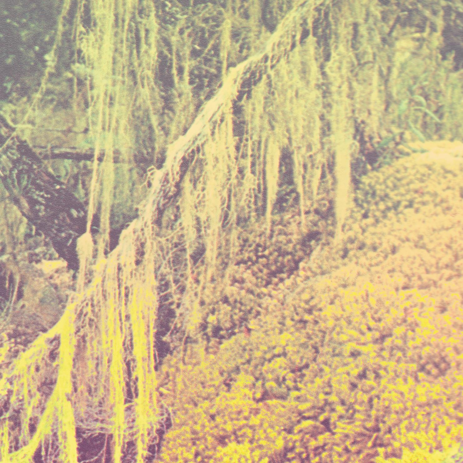 http://www.insub.org/images/ARRP_in_1.jpg